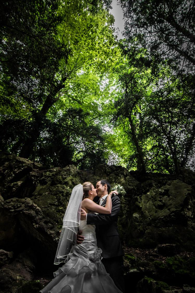 mini forêt du château de Gency