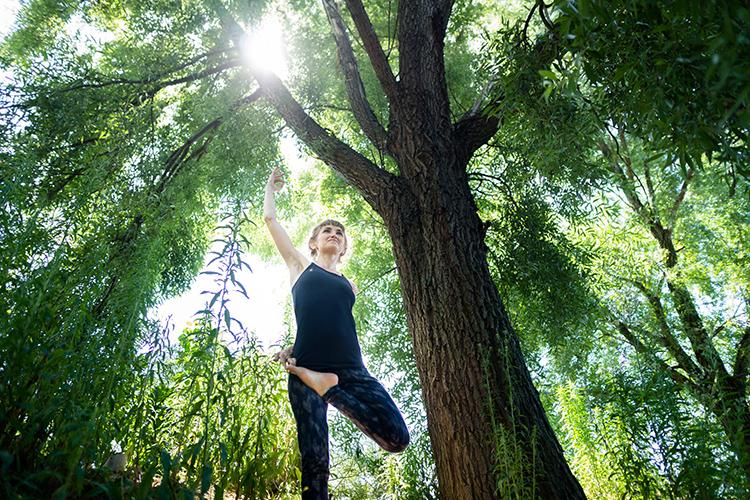nature et zen
