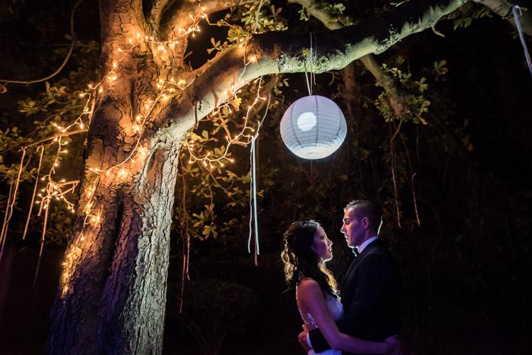 séance photo de nuit sous l'arbre de la terrasse